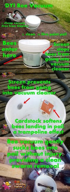 DYI Bee Vacuum - Create a gentle bee vacuum for clean swarm removals and help #savethebees! made with a recycled paint pail and a freebie cheap vacuum from Staples Office products.