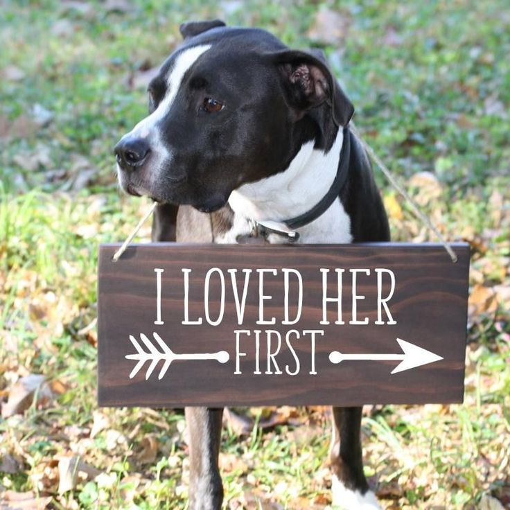 Rustic, boho I Loved Her First wood Dog Sign for wedding, engagement announcement, photo prop engagement photos