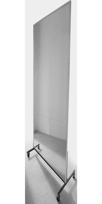 Physio Mirror