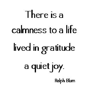 .i like calmness in life a quite life is what I have always aimed for :) I am grateful for so much in my life and always have been xo