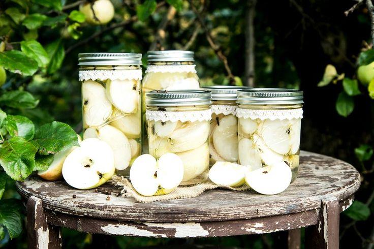 Jabłuszka zawsze są na czasie. Przygotuj ich więcej w słoikach Ball i podaruj zdrowie swoim najbliższym. Pokaż im inspiracje ze słoikami firmy Ball, a prezent będzie z radością podwójnie wykorzystany