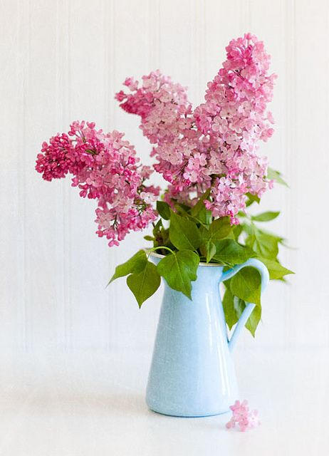 Such a gorgeous, yet simple centerpiece, except with purple lilacs.