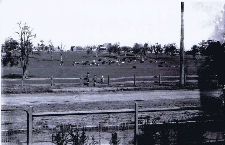 """Dairy Farm, Concord, 1923 """"Photo taken from 41 Correys Avenue. To the left of the photograph the road leads to Majors Bay Road and to the right of the photograph it leads to Concord Road."""""""