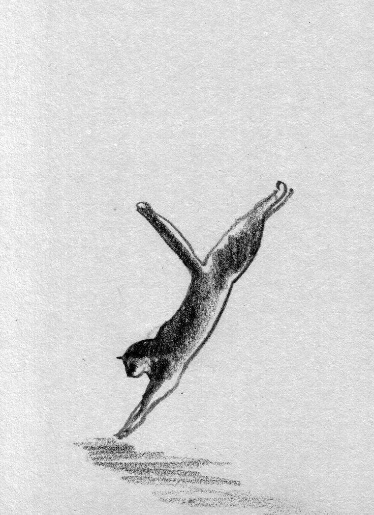 #cat #cats #sketch #sketches #sketchdrawing #pencil #pencildrawing #pencilsketch