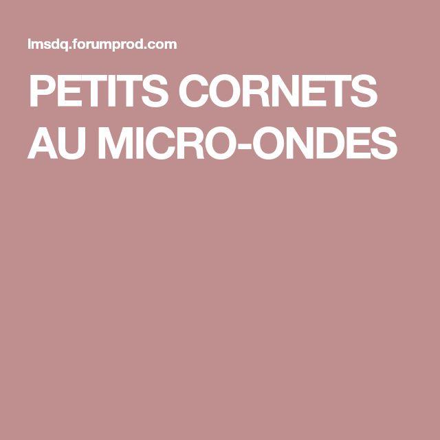 PETITS CORNETS AU MICRO-ONDES