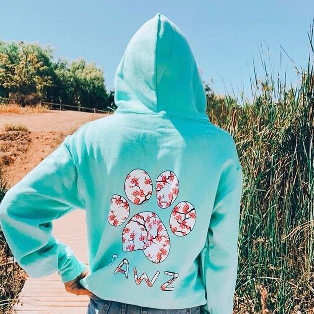 Pawz Cherry Blossom Mint Hoodie Cherry Blossom Print Hoodies Mint Cherry Blossom