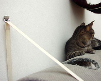 Design Cat Furniture
