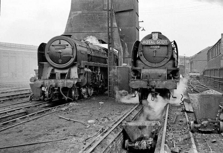Coronation Pacific 46229 'Duchess of Hamilton' and Britannia 70032 'Tennyson' stand over the ashpits at Camden, 1959.