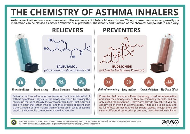 Florida Lung Asthma Sleep Specialists >>> Read more by visiting the link on the image.