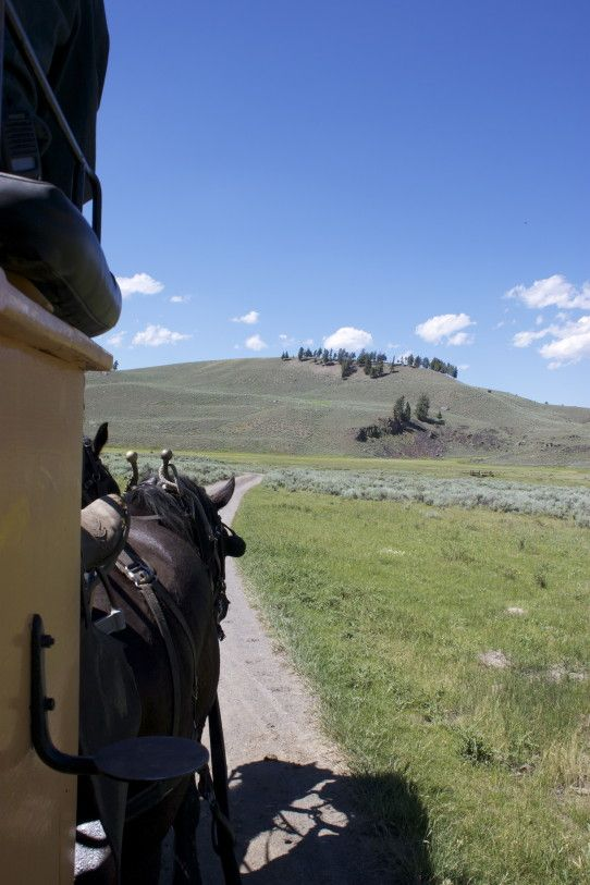 9 (other) Things to Do In Yellowstone National Park