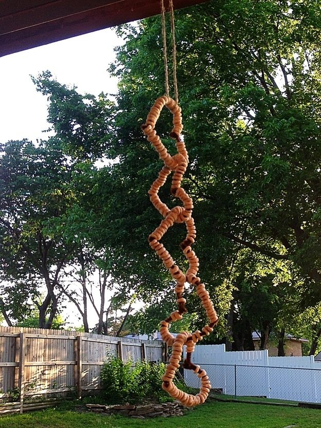 Use pipe cleaners and Cheerios to make a bird feeder.