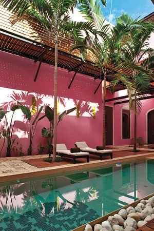 pink and palms, poolside.