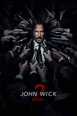 Watch John Wick: Chapter 2 Full Movie Streaming HD