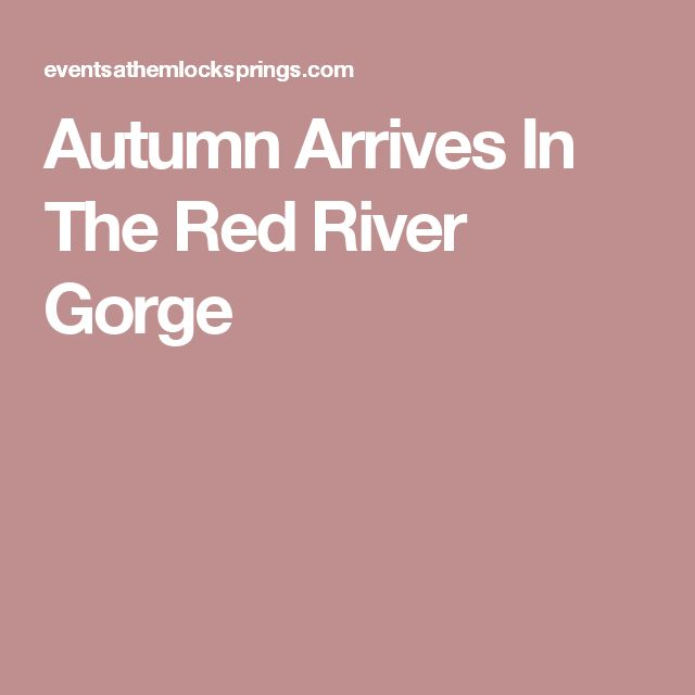 Autumn Arrives In The Red River Gorge