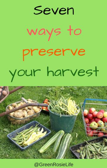 A Green and Rosie Life: Weekly Green Tips - Storing your Garden Produce