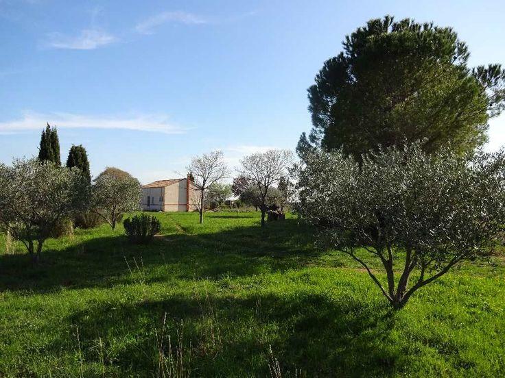 Proche toutes commodités, au calme, sans vis à vis avec vue panoramique, mas env 83 m2 avec mezzanine à aménager sur un terrain env 13000 m2. Très joli jardin paysagé planté d'oliviers, cyprès et autres essences.