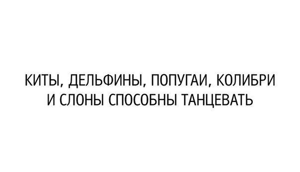 Наконец-то!!! Появился Новый, эффективный способ работы, который с легкостью может повторить любая женщина без отрыва от семьи и дома. Плюсы Уникального интернет- проекта: Без вложений , Работаешь дома, еще и зарабатываешь от 15000 руб и выше каждый месяц, минусов я не нашла. http://olgareimer.blogspot.ru/