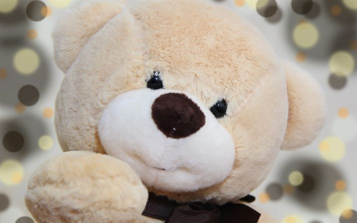 Download wallpapers teddy bear, beige bear cub, cute toys, bear, romance