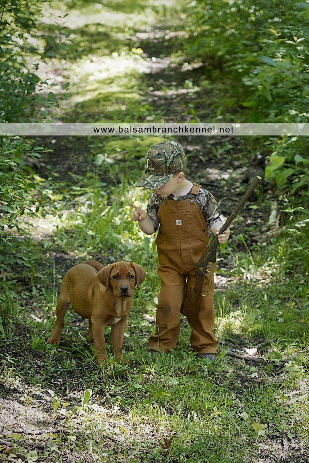 Fox Red Lab   Balsam Branch Kennel   Oakie & Declan   Puppies for Sale   Balsam Lake   Wisconsin  
