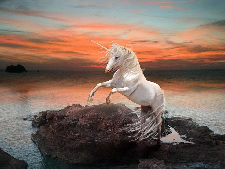 Unicornios (imágenes)