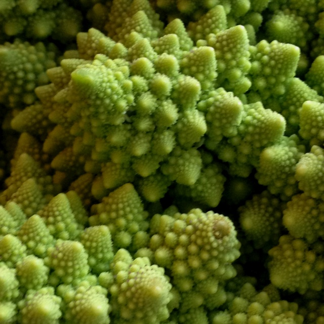 Fractal BroccoliFoodies Brides, Broccoli Vegetables, Broccoli Quinoa Casseroles, Cheesy Broccoli, Romanesco Fractals, Pretty Romanesco, Fractals Broccoli, Food Recipe, Romanesco Broccoli