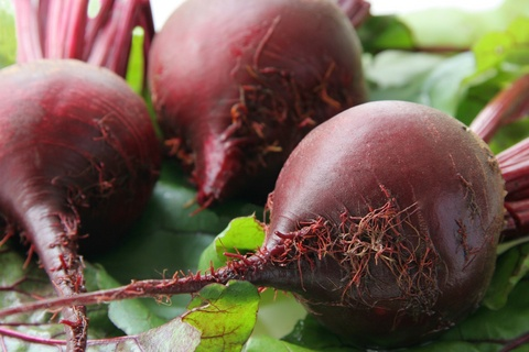 Simple Pickled Beets (And How to Grow Them)