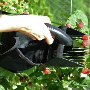 Ideal for crush-free harvesting of berries and currants of all shapes and sizes, the plastic harvesting teeth of the 14cm H by 12cm W berry picker will pluck fruit from the bushes and send it safely into the soft picker bag.  http://www.harrodhorticultural.com/folding-berry-picker-pid8882.html Folding Berry Picker - Harrod Horticultural
