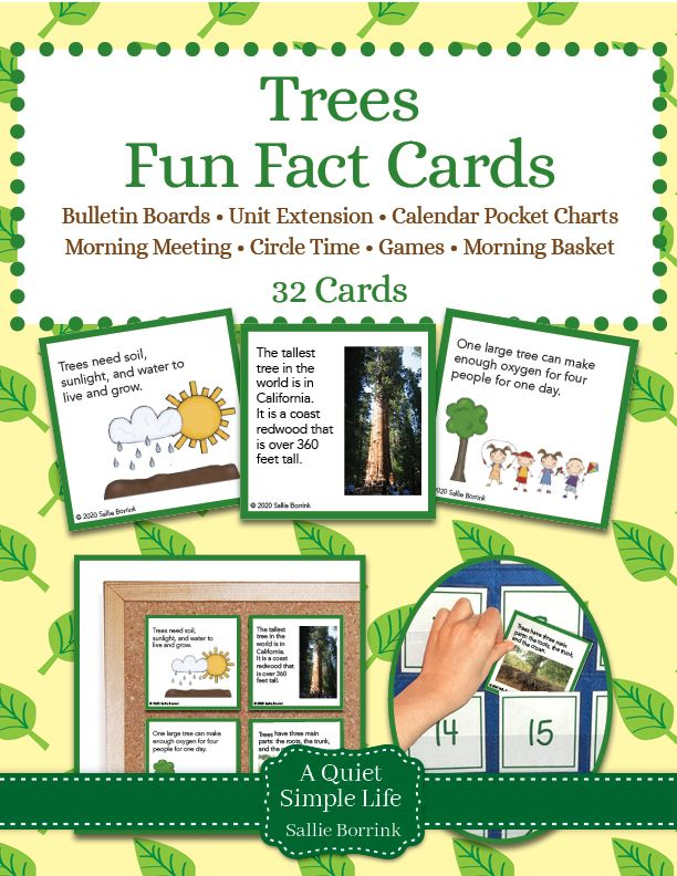 Trees Fun Facts Cards In 2020 Fun Facts Book Tree Circle Time Games