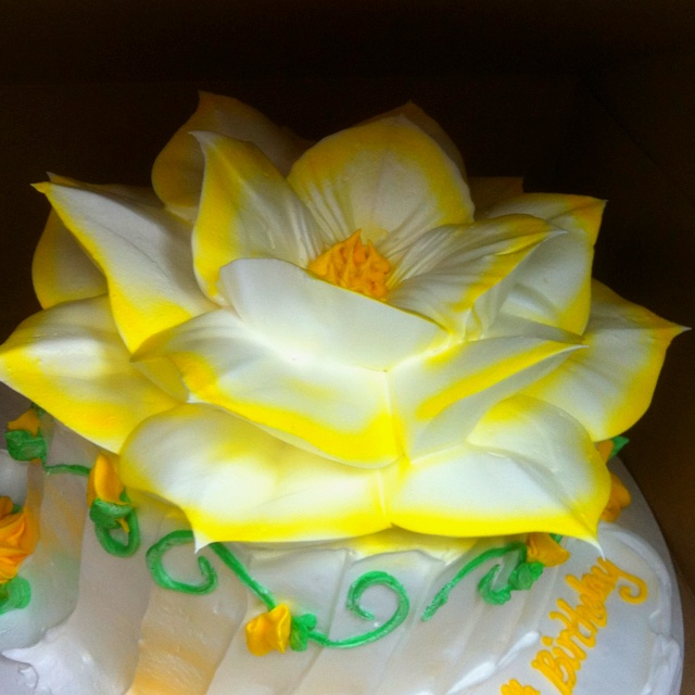 Cake Decorating With Icing Flowers : Boiled Icing Flower Birthday Cake TuTu Cute Party ...