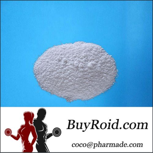 Muscle Gaining Stanolone Androstanolone Steroids Anabolic Steriods Bodybuilding   Wickr:steroidpharma  Email: coco@pharmade.com WhatsApp: +8617722570180 http://www.buyroid.com  Product name: Stanolone Other name: Androstanolone Suitable for: Adult