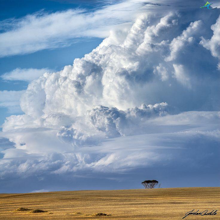 Storm over the Central Wheatbelt, Western Australia