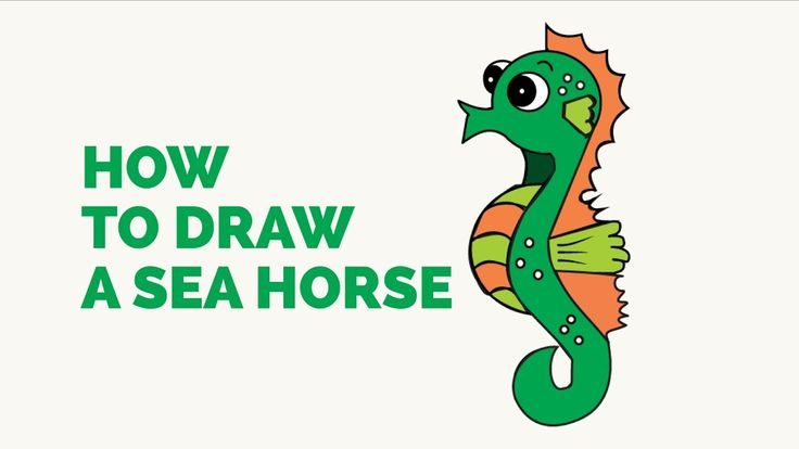 how to draw a seahorse for beginners