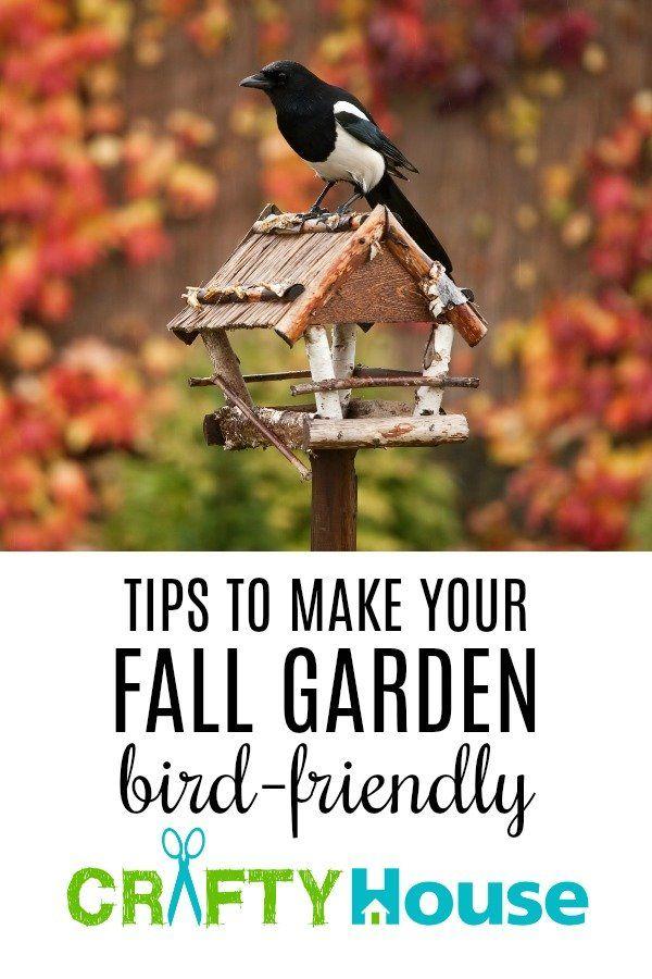Tips To Make Your Fall Garden Bird-Friendly #fall #garden