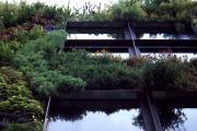 Der erste vertikale Garten im öffentlichen Raum, ausgeführt 2004, Quai Branly, Paris, Frankreich. (Bild von 2007: Heidi Howcroft)