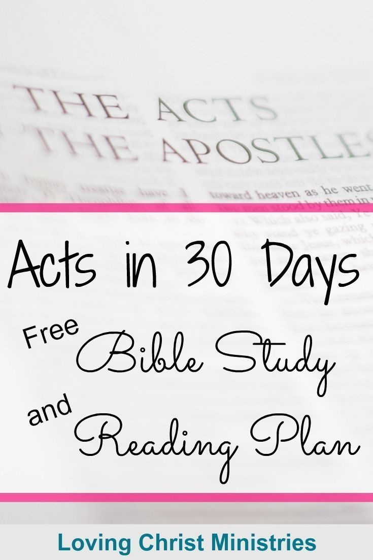 Acts in 30 Days Beginner's Bible Study and Reading Plan   Religious