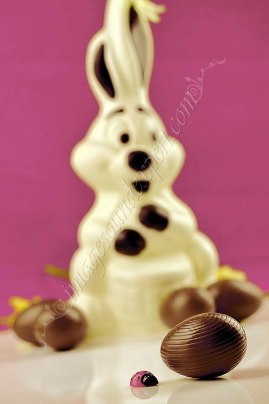 osterhase, lapin de chocolat, Fotografii produs - iepurasi de Paste de ciocolata, Photos product - easter chocolate bunnies, Fotos Produkt - Hasen chokolade, Photos des produits - lapins paques des chocolat, produits - lapins des chocolat, iepure de ciocolata, chocolate rabbit, Schokoladenhasen, lapin en chocolat   www.imagesoundexpert.com
