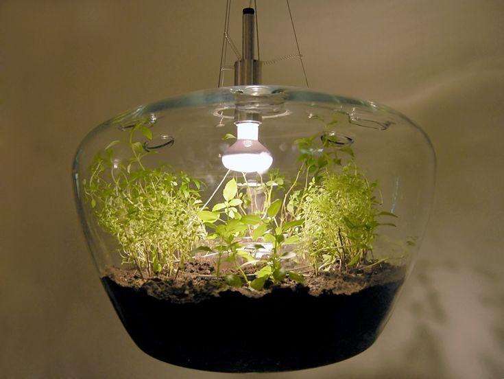 krstyna pojerova: glass greenhouse lamp | designboom
