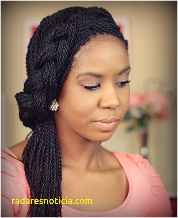 Ombre 1 30 Senegalese Twist Braided Wig Ready To Ship Etsy Senegalese Twist Braids Twist Braids African Braids Hairstyles