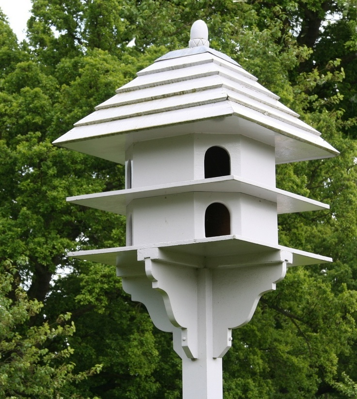 1000 images about birds on pinterest gardens parrots for Dove bird house