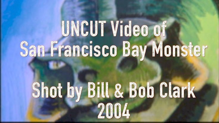 Uncut video of San Francisco Bay Monster