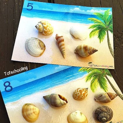 Shells on the Beach: Counting Cards