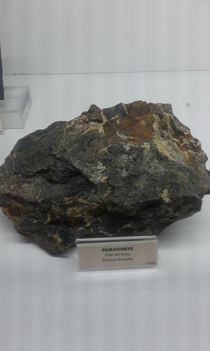 Gneis formado por metamorfismo a partir de rocas sedimentarias.