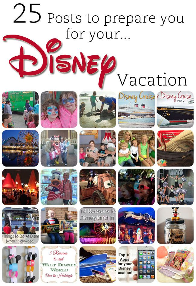 25 Posts to Prepare You for Your Disney Vacation