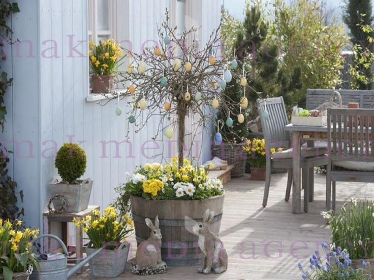 holzfass bepflanzt mit salix caprea 39 pendula 39 kaetzchenweide fruehling auf deck weide im. Black Bedroom Furniture Sets. Home Design Ideas