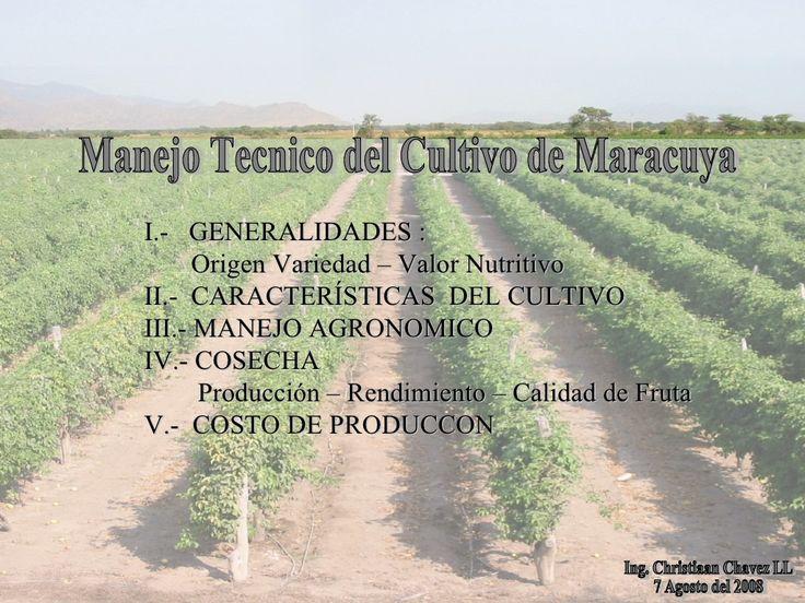 Manejo Tecnico Del Cultivo De Maracuya . C Ch by Roberto Edwin via slideshare