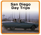 San Diego Visitors Guide    Visiting San Diego? Our San Diego visitors guide provides you with local information about San Diego. We have tips on local attractions, hotels, restaurants, how to get around San Diego, shopping, day trips, beaches, family-friendly activities and so much more.    San Diego Beaches    San Diego Hotels    San Diego Restaurants