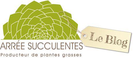 Le blog Arrée Succulentes