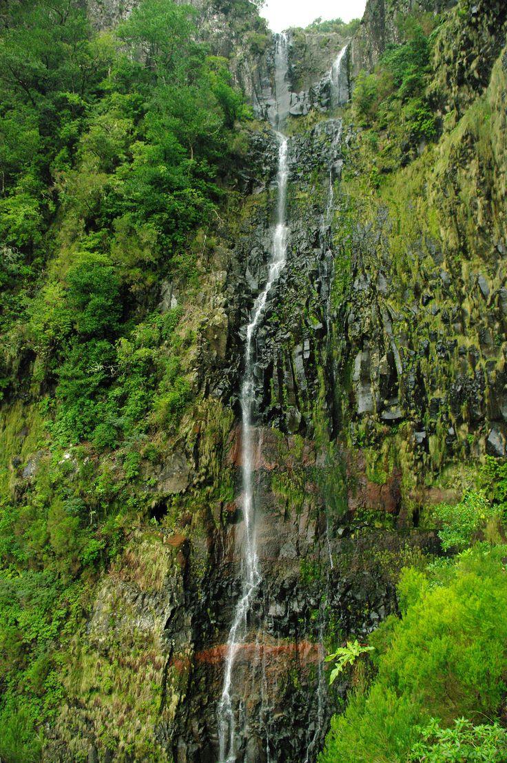 Portugal - Madeira - Rabacal - Levadas - Risco
