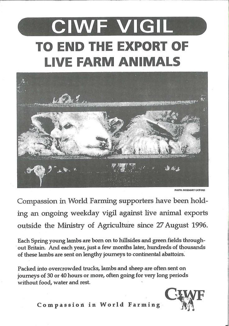 A call to action for the live export vigils in the late 90s. These vigils still go on, contact Compassion for more information about how you can attend vigils. Compassion in World Farming.