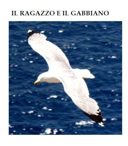 Il ragazzo e il gabbiano di Michele  Di Salvo, http://www.amazon.it/dp/B00904RRFI/ref=cm_sw_r_pi_dp_zylctb19VRD87